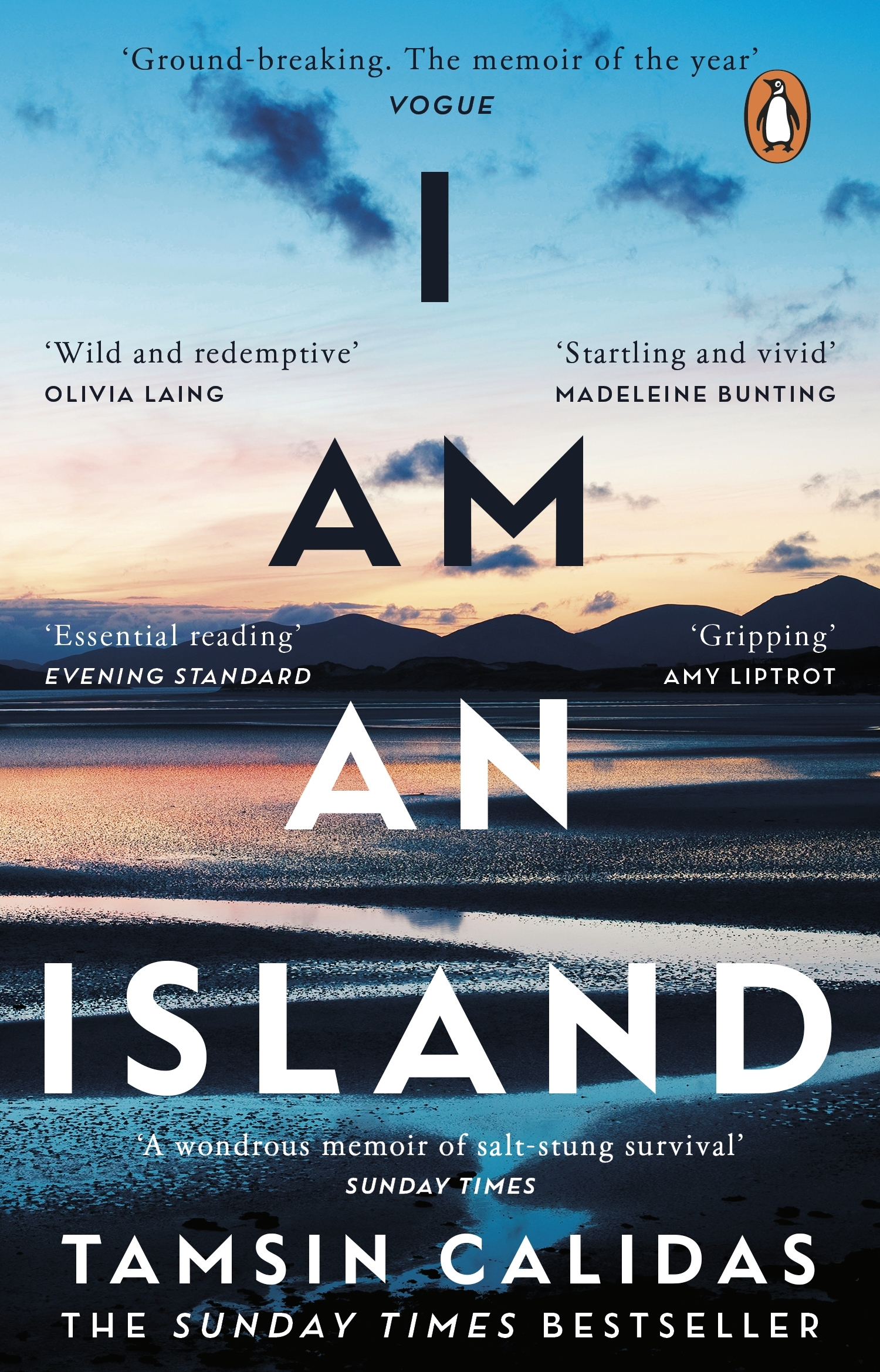 Read more about the article I am an Island